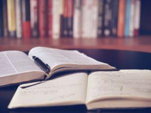 スタディサプリTOEICとビジネス英語との学習効果の比較